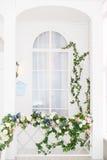 Finestra bianca elegante invasa con pianta Fotografie Stock Libere da Diritti