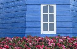Finestra bianca sulla parete di legno blu con i fiori nella priorità alta Fotografie Stock Libere da Diritti