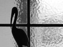 Finestra in bianco e nero Immagini Stock