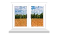 Finestra chiusa con un genere sul campo di grano Immagini Stock Libere da Diritti