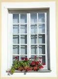 Finestra con i fiori Fotografie Stock Libere da Diritti