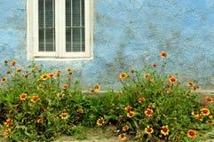 Finestra con i fiori Immagine Stock Libera da Diritti