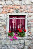 Finestra con i fiori Fotografia Stock