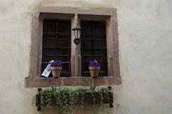 Finestra con i fiori e una vecchia torcia Immagine Stock Libera da Diritti