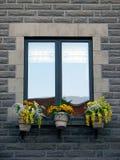 Finestra con i fiori gialli di fioritura Fotografia Stock