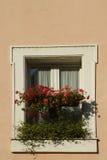 Finestra con i fiori rossi Fotografie Stock