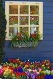 Finestra con i fiori variopinti in primavera Fotografia Stock