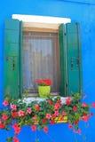 Finestra con i POT di fiore fotografia stock libera da diritti
