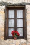 Finestra con il fiore Immagini Stock