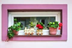 Finestra con la struttura rosa Fotografie Stock
