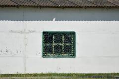 Finestra con le barre verdi Fotografia Stock Libera da Diritti