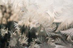 Finestra congelata Fotografia Stock