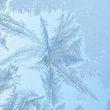 Finestra congelata con il reticolo di vetro Immagine Stock Libera da Diritti