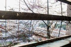 Finestra decomposta con i cavi elettrici in una costruzione condannata Fotografia Stock Libera da Diritti