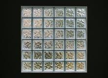 Finestra 6x6 del blocchetto di vetro del quadrato immagine stock libera da diritti