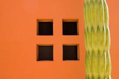 Finestra del cactus Fotografia Stock Libera da Diritti
