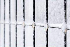 Finestra del gelo invernale Fotografia Stock