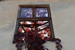 Finestra della Camera abbandonata fotografia stock libera da diritti