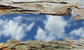 Finestra della corteccia di albero alle nuvole fotografia stock libera da diritti