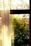 Finestra di autunno Immagine Stock