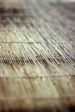 finestra di bambù del coperchio Immagini Stock Libere da Diritti