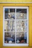 Finestra di deposito del ricordo Immagini Stock Libere da Diritti