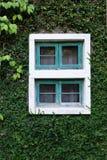 Finestra di legno sulla parete verde Fotografia Stock Libera da Diritti