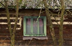 Finestra di legno verde da una casa di legno, incorniciata da due alberi Fotografia Stock