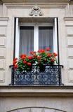 Finestra di Parigi con i fiori del geranio Immagini Stock