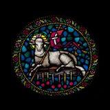 Finestra di vetro macchiato con l'agnello Fotografie Stock Libere da Diritti