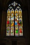 Finestra di vetro macchiato della cattedrale di Colonia Fotografia Stock