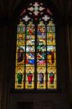 Finestra di vetro macchiato della cattedrale di Colonia Immagine Stock Libera da Diritti