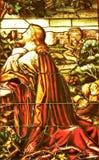 Finestra di vetro macchiato di pregare di Gesù fotografia stock libera da diritti