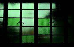 Finestra di vetro verde immagine stock