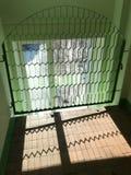 Finestra dietro la griglia calcolata nella forma di arco e le cellule nella forma di cellule prolungate fotografia stock libera da diritti