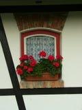 finestra e fiori immagini stock