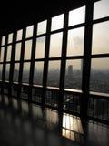 Finestra e la cima della torre di Tokyo Fotografia Stock Libera da Diritti