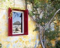 Finestra e pianta di legno Immagini Stock