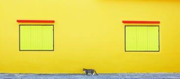 Finestra gialla due e un gatto Fotografia Stock
