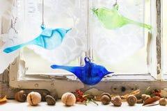 Finestra interna con gli uccelli ed i dadi di vetro Immagine Stock