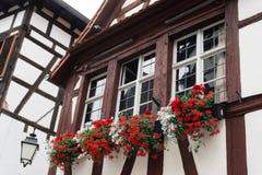 Finestra tipica con il fiore di vecchia casa a Strasburgo fotografia stock libera da diritti