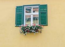 Finestra verde esterna con i fiori colorati, parete gialla immagine stock libera da diritti