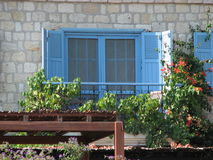 Finestre blu Fotografie Stock