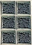 Finestre di vetro Fotografia Stock