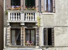 Finestre veneziane con i fiori Immagini Stock