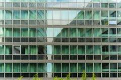 Finestre verde chiaro sulla torre di affari fotografia stock