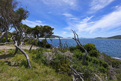 Fingal Bay Royalty Free Stock Photos