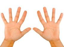 Finger Lizenzfreies Stockfoto