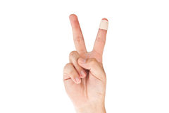 Finger with bandage Stock Photo