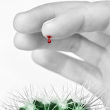 Finger with a blood drop. Pricked by cactus stock photography